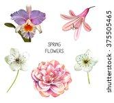 illustration of beautiful... | Shutterstock . vector #375505465