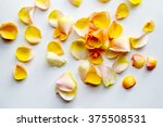 Stock photo yellow rose petals on a white fabric 375508531
