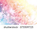 sweet color blur flower ...   Shutterstock . vector #375509725
