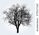 tree vector illustration. | Shutterstock .eps vector #375517165