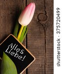 Small photo of Pink tulip with a blackboard and the German words All the best!