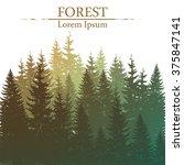 wild coniferous forest... | Shutterstock .eps vector #375847141