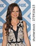 Small photo of PASADENA, CA - JANUARY 13, 2014: Mary Lynn Rajskub at the Fox TCA All-Star Party at the Langham Huntington Hotel, Pasadena.