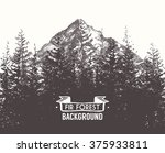 Fir Forest Background With...