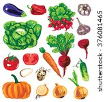 preview variety of vegetables... | Shutterstock .eps vector #376081465