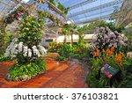 orchid park at rayal rajchapruk ... | Shutterstock . vector #376103821