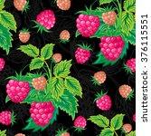 illustration. colorful... | Shutterstock . vector #376115551