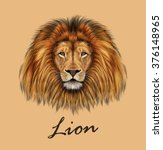 African Lion. Vector...