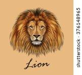 african lion. vector... | Shutterstock .eps vector #376148965