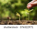hands of a farmer watering... | Shutterstock . vector #376322971