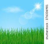 green grass on sunny sky... | Shutterstock .eps vector #376336981