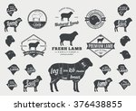 set of lamb logo. butchery... | Shutterstock .eps vector #376438855