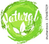 logo natural with leaves ... | Shutterstock .eps vector #376487029