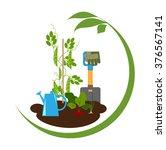 vegetable garden  vegetables in ...   Shutterstock .eps vector #376567141