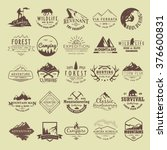 set of vintage labels on the... | Shutterstock .eps vector #376600831