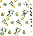 lemons watercolor pop art style ... | Shutterstock . vector #376821511