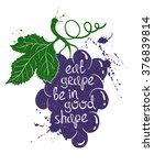 hand drawn illustration of...   Shutterstock .eps vector #376839814