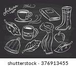 autumn themed doodle on... | Shutterstock .eps vector #376913455
