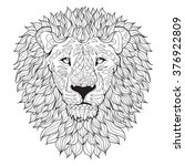 hand drawn lion head . isolated ... | Shutterstock .eps vector #376922809