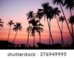 Silhouetted Of Coconut Tree...