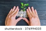 plant and coins by hands top... | Shutterstock . vector #376994035