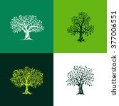 beautiful oak and olive trees... | Shutterstock .eps vector #377006551