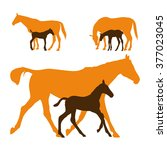 Mare With Foal. Three Vector...