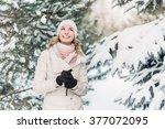 beautiful girl in the winter in ... | Shutterstock . vector #377072095