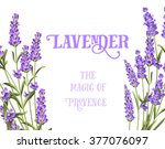 the lavender elegant card. | Shutterstock .eps vector #377076097