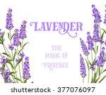 the lavender elegant card. | Shutterstock .eps vector #377076097