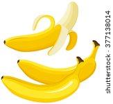 banana | Shutterstock .eps vector #377138014