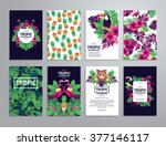 tropical printable set. vector... | Shutterstock .eps vector #377146117
