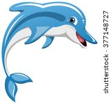 Happy Jumping Dolphin Isolated