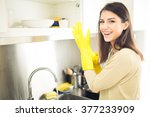 hand cleaning.young housewife... | Shutterstock . vector #377233909