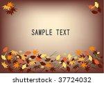 leaves  in autumn   illustration | Shutterstock .eps vector #37724032