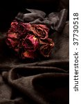 Bunch Of Red Dry Roses On Black ...