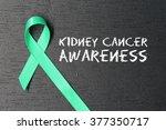 kelly green ribbon. kidney... | Shutterstock . vector #377350717