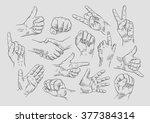hand drawn vector sketch... | Shutterstock .eps vector #377384314