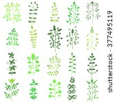 set of watercolor young green... | Shutterstock .eps vector #377495119