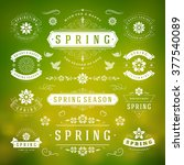 spring typographic design set.... | Shutterstock .eps vector #377540089