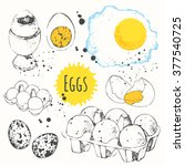 chicken and quail fresh  boiled ... | Shutterstock .eps vector #377540725