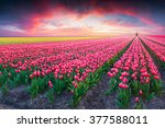 Dramatic Spring Scene On The...