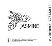 jasmine flowers isolated.... | Shutterstock .eps vector #377632684