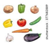 mixed vegetable on white... | Shutterstock . vector #377682889