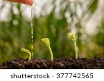 agriculture   seeding  ... | Shutterstock . vector #377742565