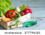spring vegetables in the basket ... | Shutterstock . vector #377796181