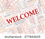 welcome word cloud in different ... | Shutterstock .eps vector #377843635
