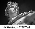 apollo belvedere statue   Shutterstock . vector #377879041