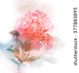 watercolor card with beautiful... | Shutterstock . vector #377883895