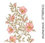 dog rose flower background.  | Shutterstock .eps vector #377885611